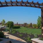 trellis lincoln backyard