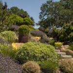 Sacramento landscape design