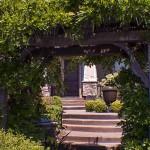 front yard steps vine covered trellis