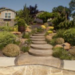 Landscaping in Carmichael