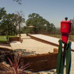 Roseville landscape design options